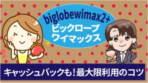 biglobewimax2+ビックロ―ブワイマックスにはキャッシュバックも!最大限に利用するコツ