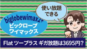 biglobewimax2+ビックロ―ブワイマックス Flat ツープラス ギガ放題は3695円使い放題できる