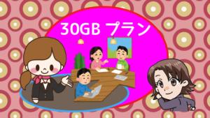 30GBプラン